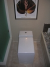 A modern square toilet can change the look of the room.