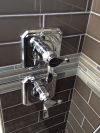 Options for a light spray shower in the morning or a great massage shower.  The choice is always there.